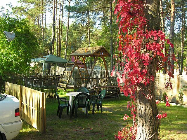 podwórze jesienią