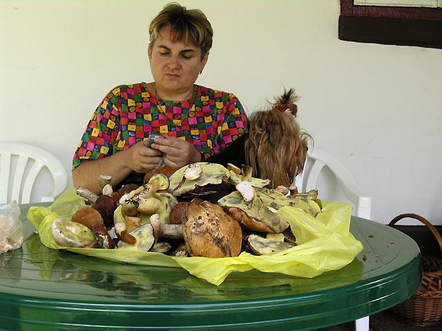 Ala i Doda wśród grzybów