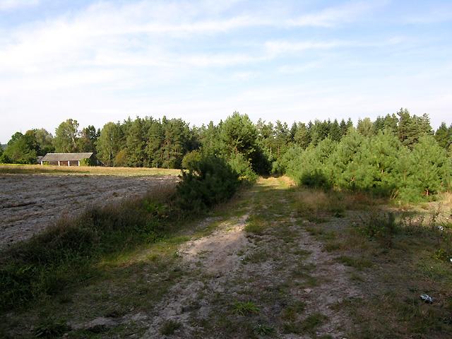 prosto przez las i pole dochodzimy do wsi Łasochy
