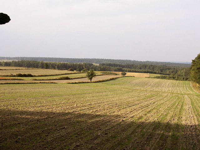 widok na północ w stronę gdzie idzie szlak zielony i niebieski