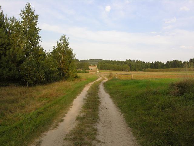 z tyłu droga na Wapielnię od strony Łaszczacza